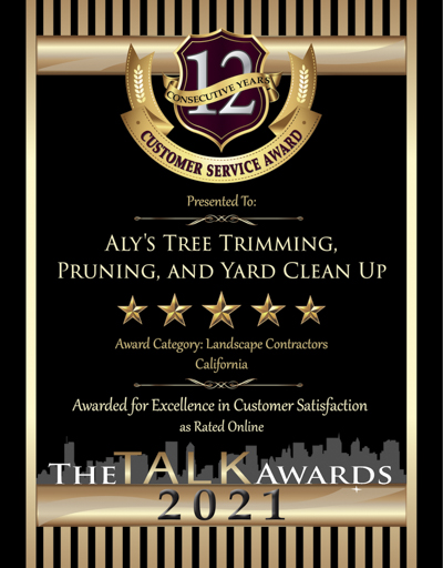 Aly's Tree Trimming, Pruning & Yard Clean-Up wins 2021 Talk Award